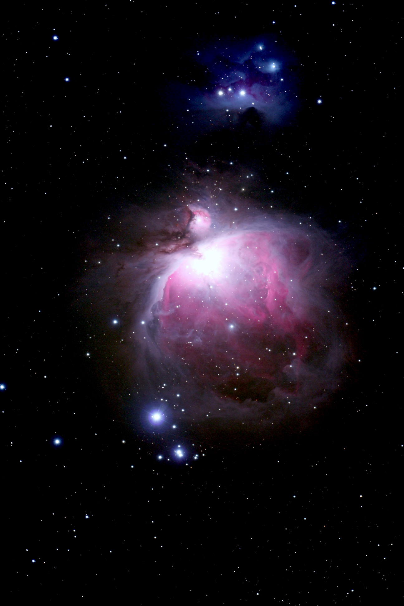 Emission Nebula Orion (page 3) - Pics about space
